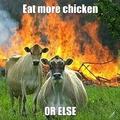 But im vegetarian
