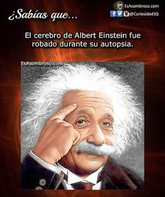 Albert 4 Ever - meme