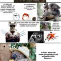 KoalaKazo fine hai fatto?cito Memedroider93 e BennyFrency63!