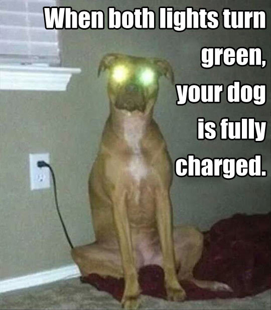 Very Charge - meme