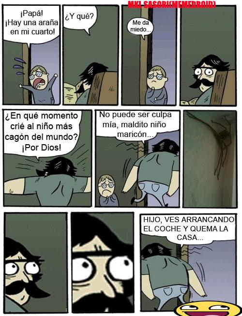 PAPA HAY UNA ARAÑA - meme