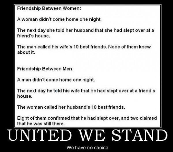 united we stand - meme