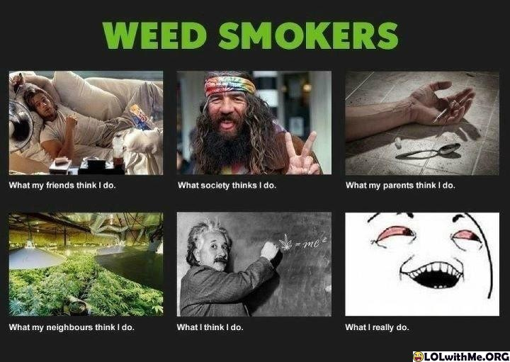 Weed Smokers Depiction - meme