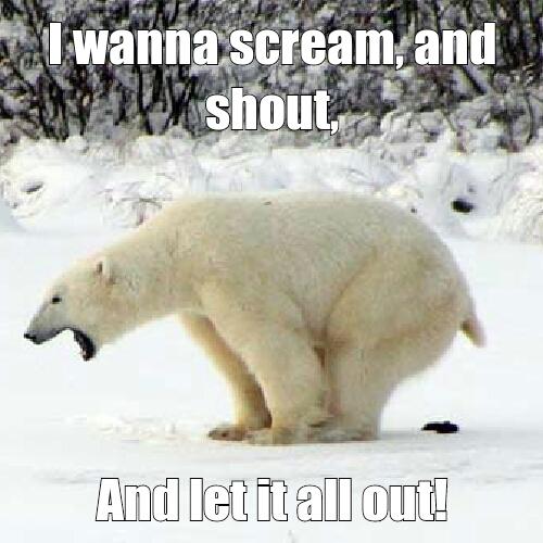 ha huh bear poopy - meme