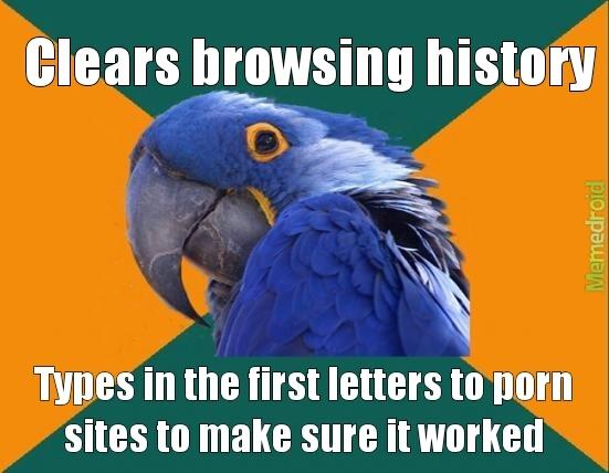 I'm a paranoid parrotparroti - meme