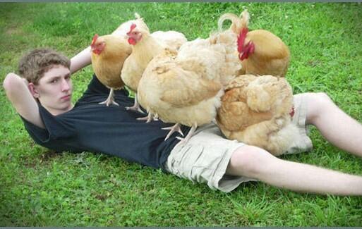 chicks love me - meme