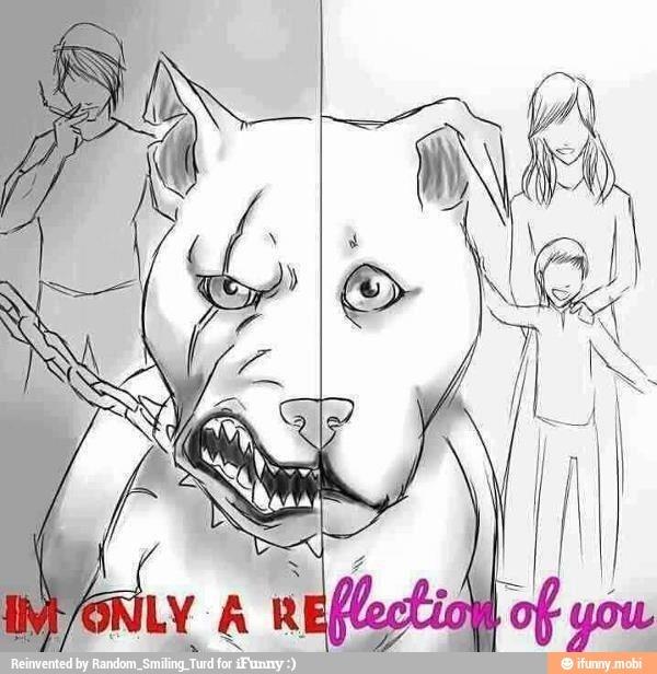 I love pit bulls! I have two. <3 - meme