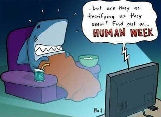 human week - meme