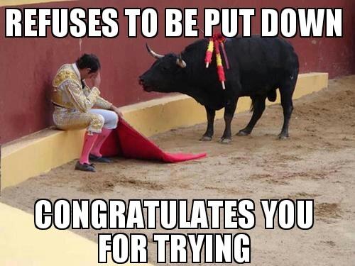 Good guy bull - meme