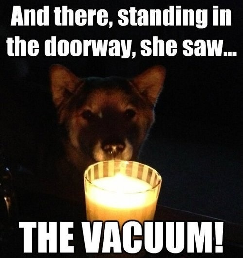 ghost stories puppy edition - meme