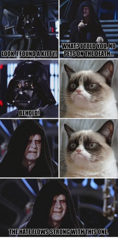 the force - meme