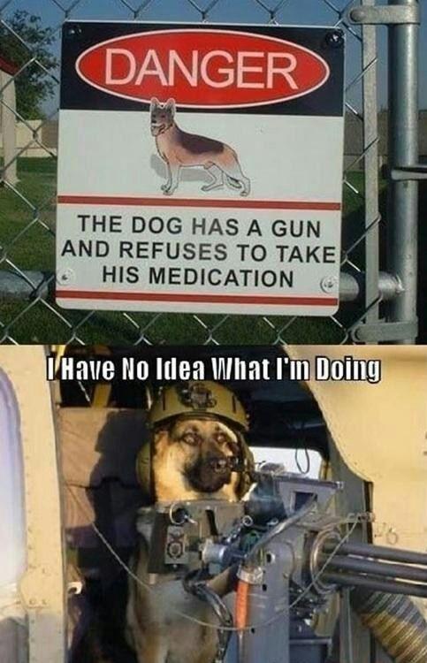 he refuses!! - meme