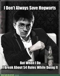Because he's Harry freakin Potter! - meme
