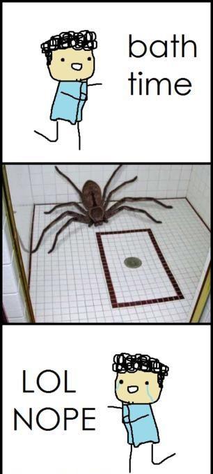 Fuck spiders  ._. - meme