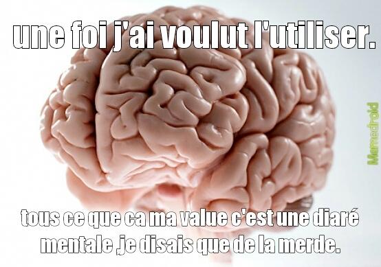 interligence - meme