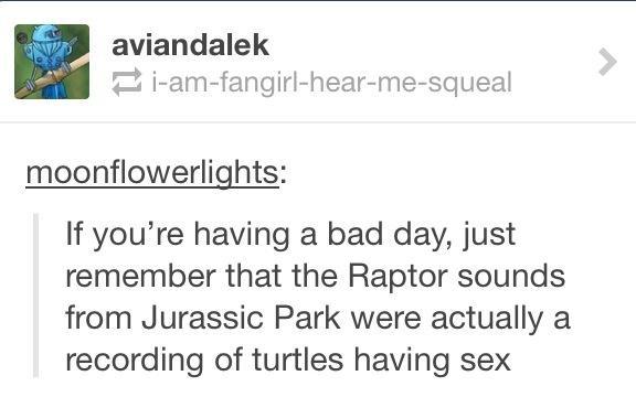 Turtle sex - meme