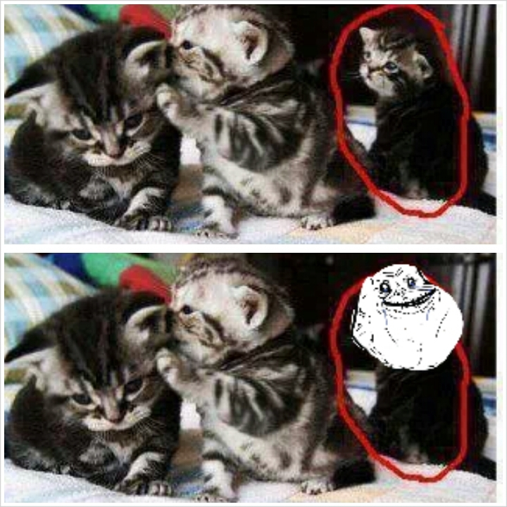 forever alone kitty... - meme