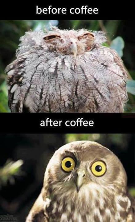 koffee meeks u craizy - meme
