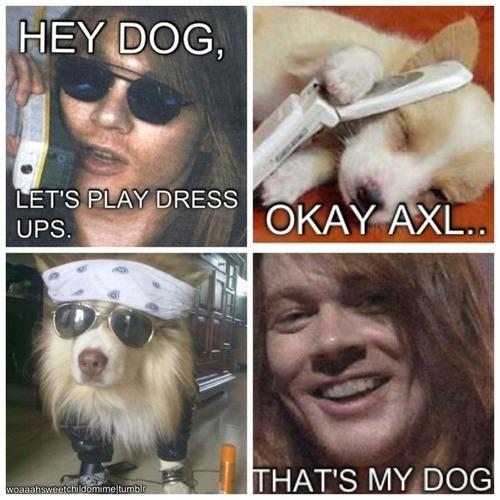 Axl Rose doesn't like titles - meme