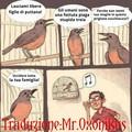 Gli uccelli(if you know what I mean)sono molto cattivi...