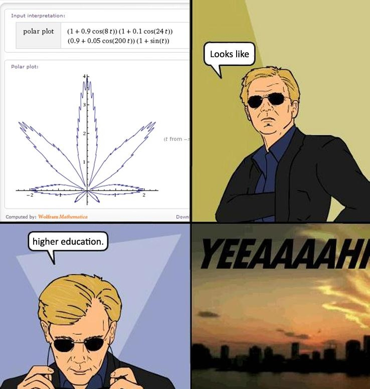 Algebra Bitch - meme