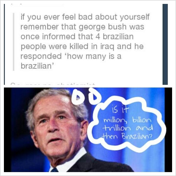 Wow Bush, wow - meme