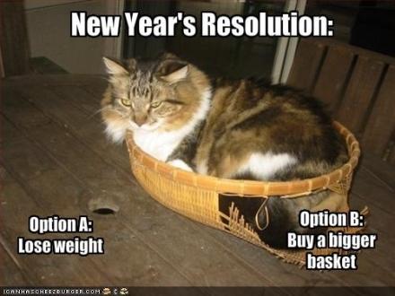 New Year's Reslution - meme