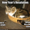 New Year's Reslution