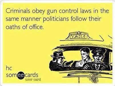 But it's a great idea to ban guns.  - meme
