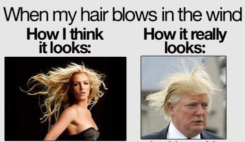 4fd25d3f725a2 hair wind meme by retu ) memedroid
