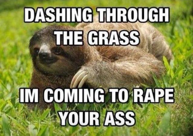 rape sloth comes to town - meme