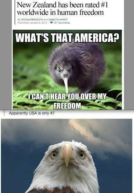 must get....out of....america - meme