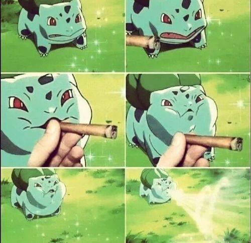 ese bulbasaur todo fumado xD - meme