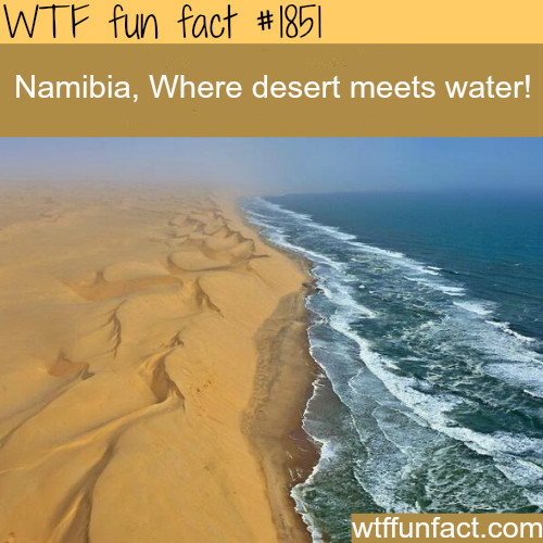 Namibia is so cool!! - meme