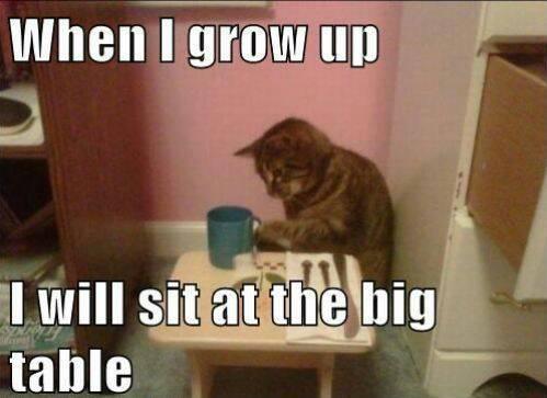 5298450c06573 i'm a big kid now meme by joeycallahan36 ) memedroid