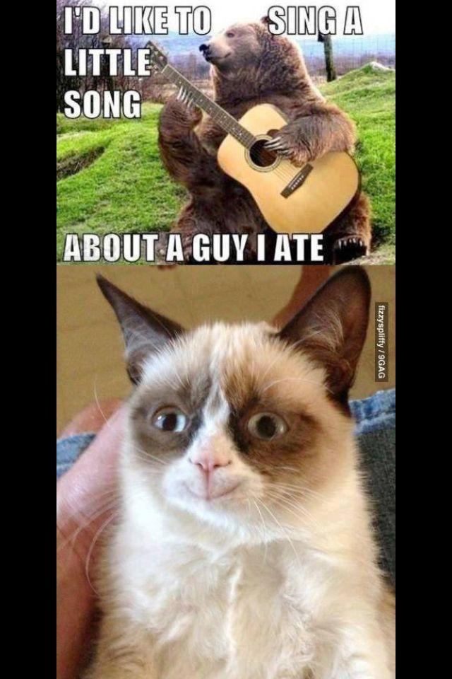 Happy cat? - meme