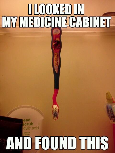 Spider Brush! - meme