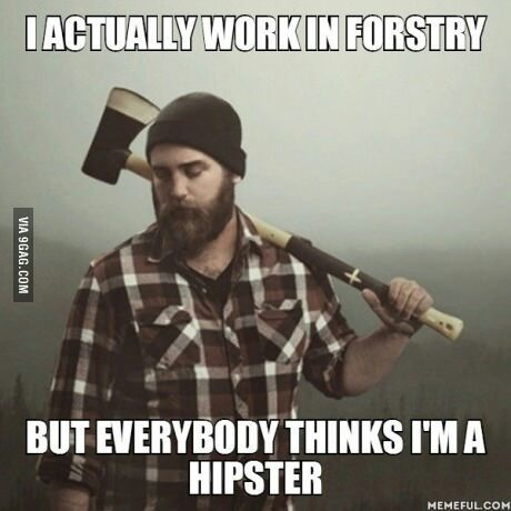 this damn hipsters - meme