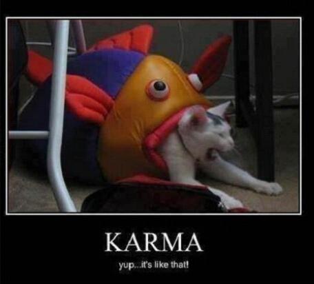 karma's a bitch - meme