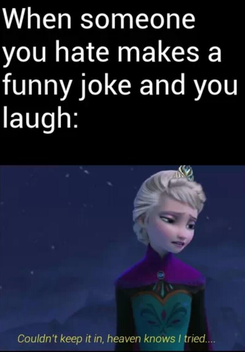 Frozen humor - meme