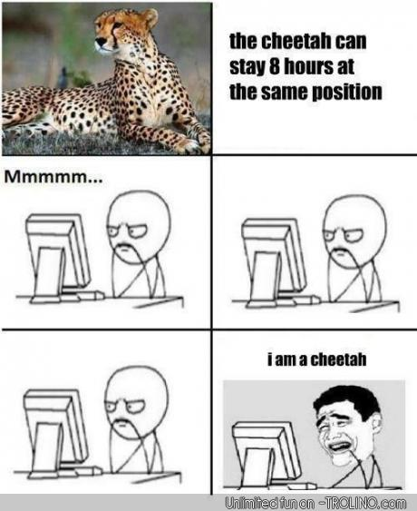 I am a cheetah - meme