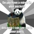 Oh panda