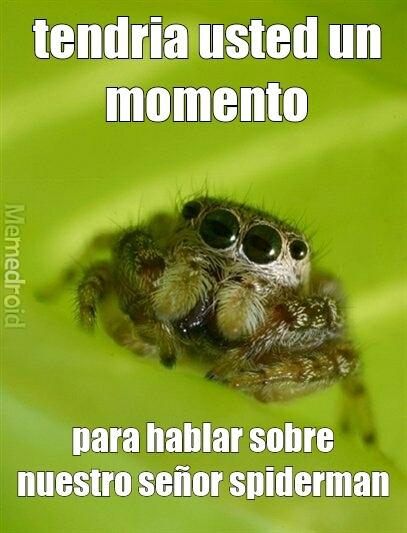 testigos de spiderman xD - meme
