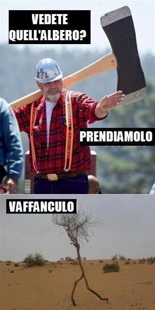 alberooooo - meme