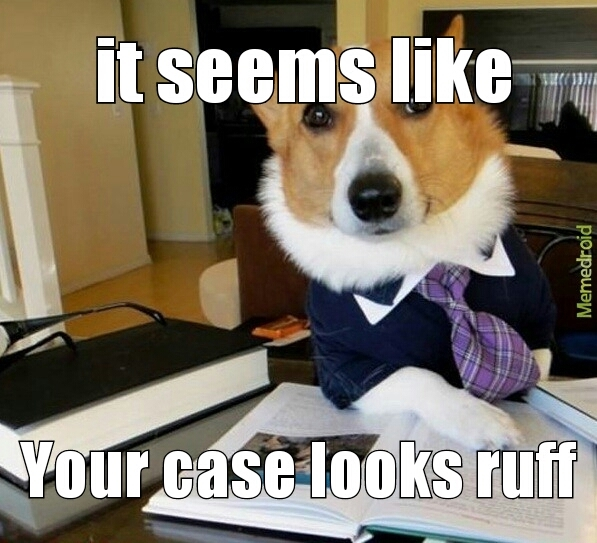 ruff case - meme