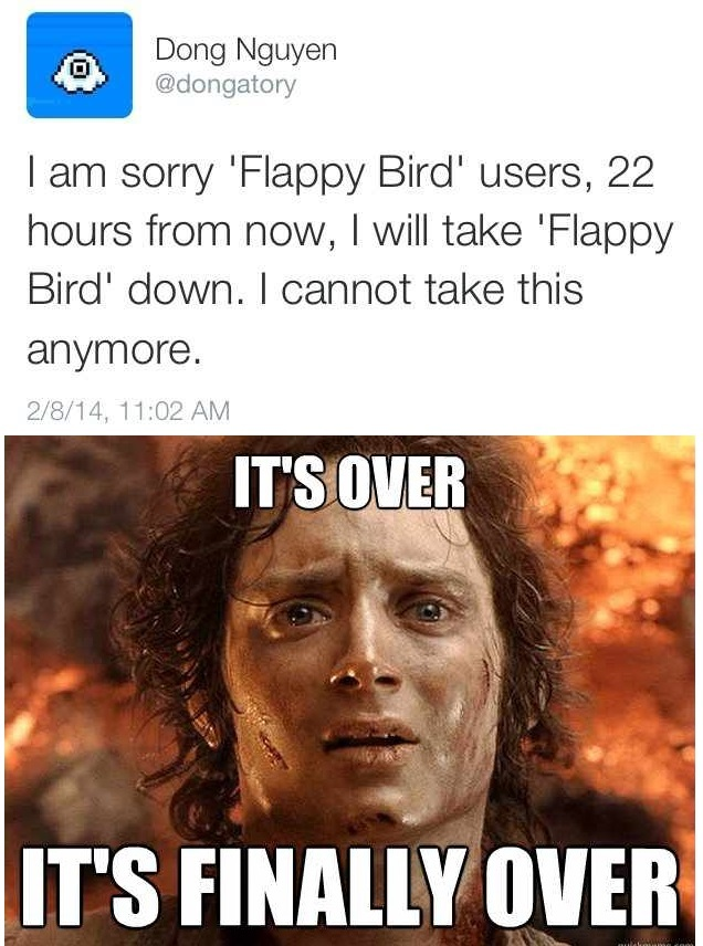 No more flappy birds on memedroid!
