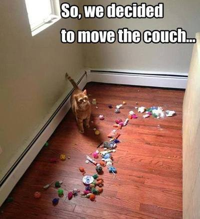 Move your couch! - meme