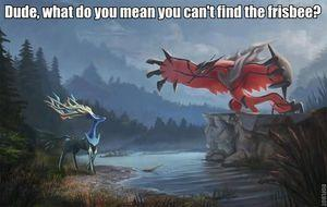 goddammit xerneas how we gonna play if you keep losing our shit? - meme