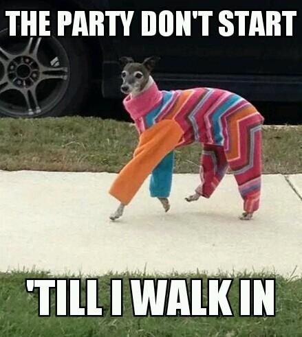 party hard - meme