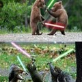 animals star wars